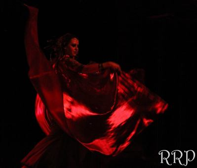 14-Djinn-Arabesque-2015-Northwest-Bellydance-Spokane-Bellydance-Professional-Hire-Classes-16