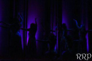 8-Dreams-Arabesque-2015-Northwest-Bellydance-Spokane-Bellydance-Professional-Hire-Classes-1